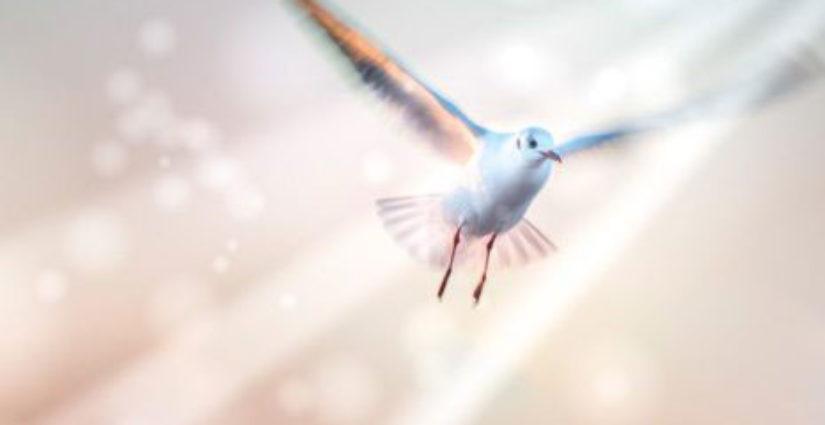 Постоянное действие Духа Святого