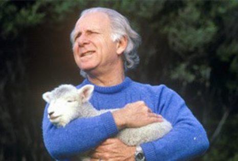 Пастух и овечка